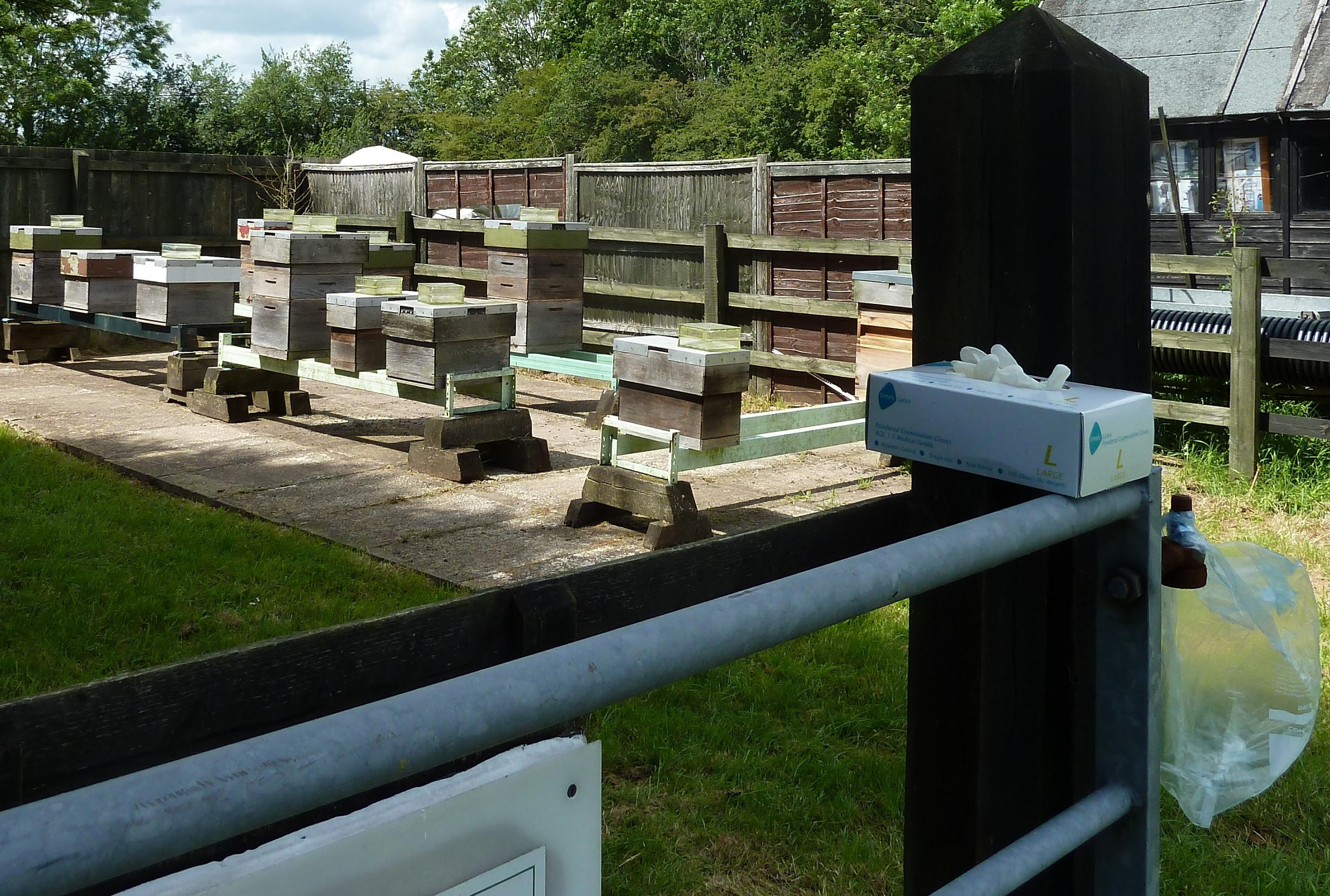 Apiary visits and sites